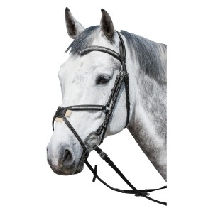 d58bcd5d2054c Ogłowia - Sklep jeździecki Equiversum