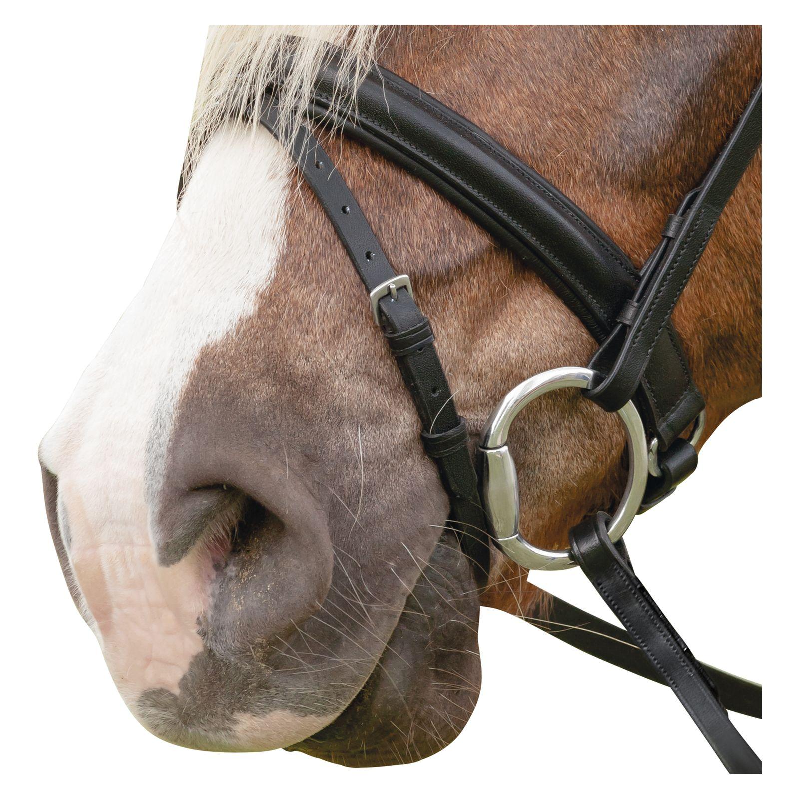 54c0e4686c3ce Loesdau Ogłowie na konie zimnokrwiste Silas - Sklep jeździecki ...